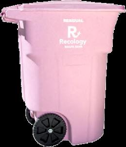 pinktoter